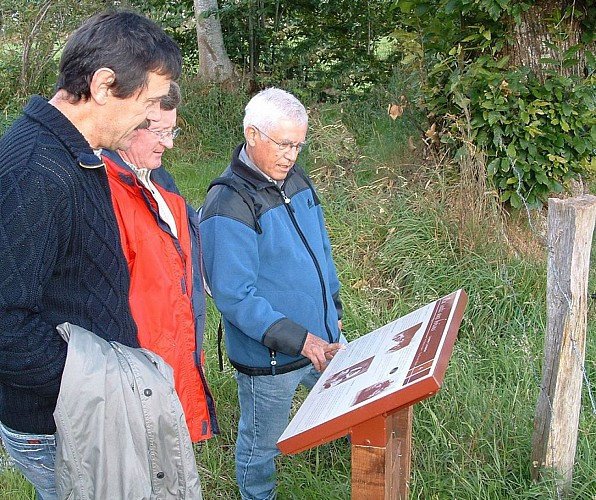 Circuit n°3 : Taillis de Pouillé - Commune de Larchamp