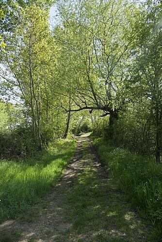 Le Bois de Bégut
