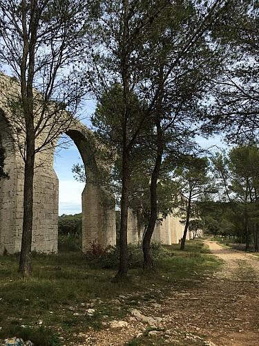 FTT - L'aqueduc de Castries en remontant vers Guzargues