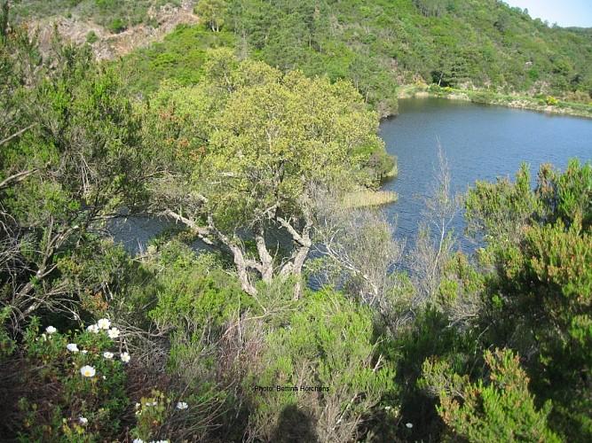 Le rucher de Blay et le moulin à eau de Blanche - Rando 10