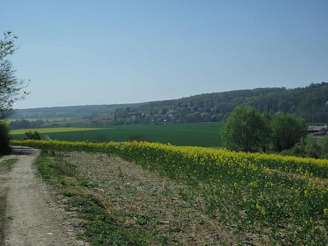paysage Brie à vélo