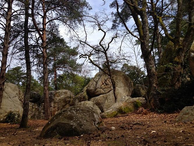 Rochers Cuvier Chatillon en forêt de Fontainebleau