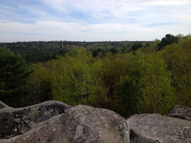 Gorges d'Apremont en forêt de Fontainebleau
