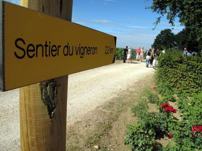 Sentier du vigneron