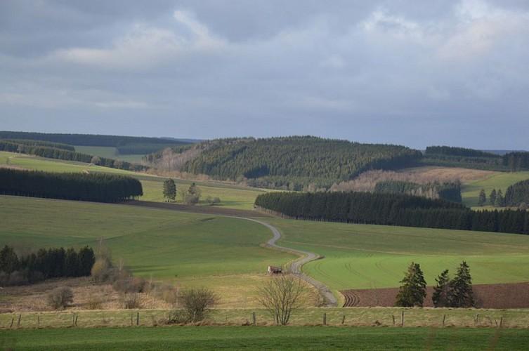 Sentier Jalifé et Chemin du Pré sauvage
