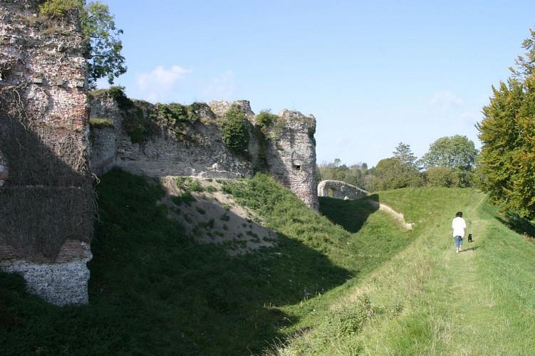 Du château d'Arques à l'Avenue Verte