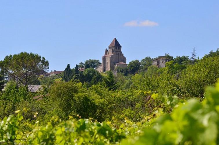 Coteaux du Lot et de la Garonne