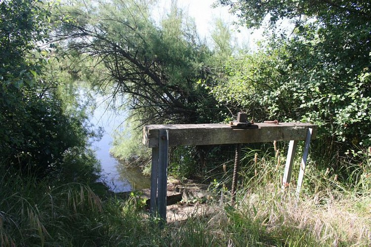 A Audenge, sur le Domaine de Graveyron entre terre et eaux