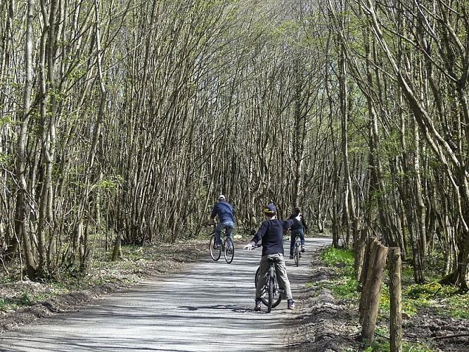 Véloroute voie verte de la Vallée de l'Isle
