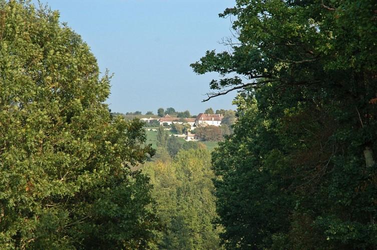 Boucle de la Vallée - Conne de Labarde