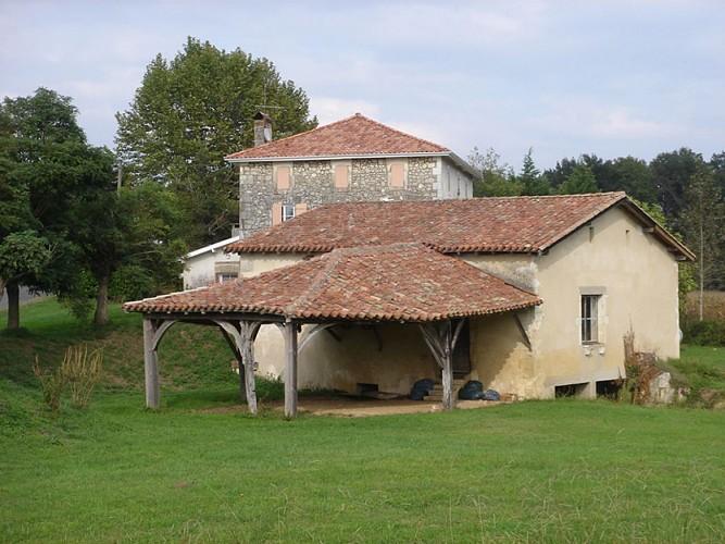 A Bastennes, circuit du Luy