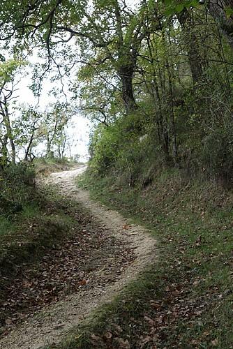 A Geaune, circuit de Pichots
