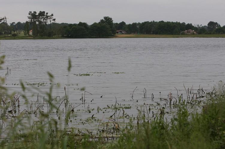 A Hagetmau, circuit des lacs