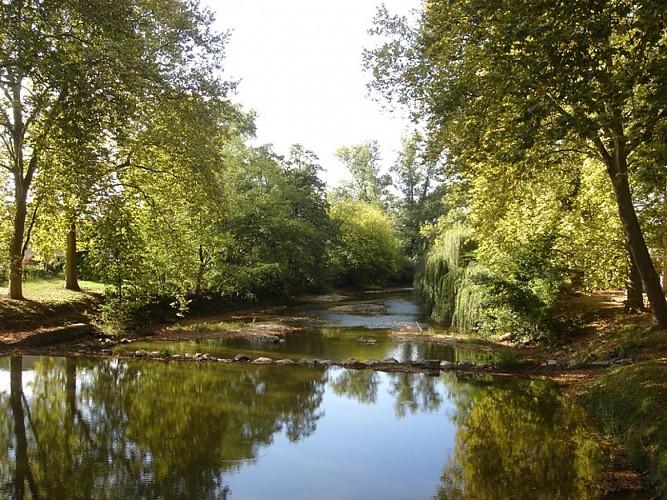 A Amou, circuit du ruisseau des landes d'Andriaou