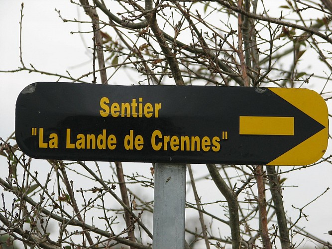 Circuit n°20 : De la Lande de Crennes au Petit Val