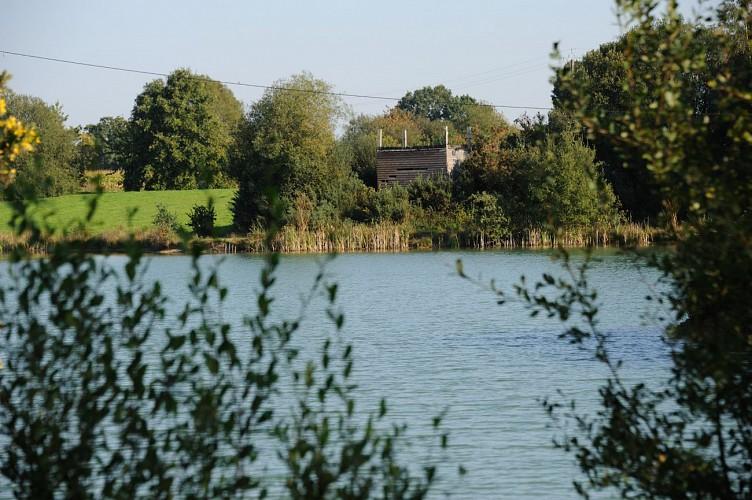 Circuit n°24 : La Briqueterie - Commune de La Baconnière