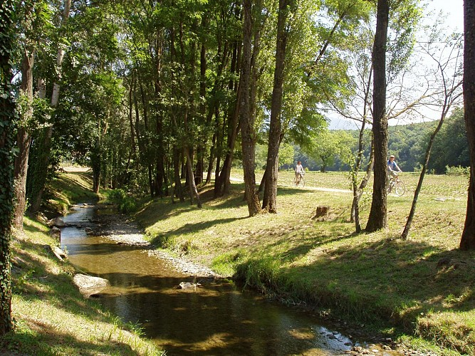 The banks of the river Foron