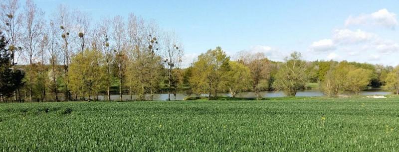 étangs à Villeneuve-la-Dondagre