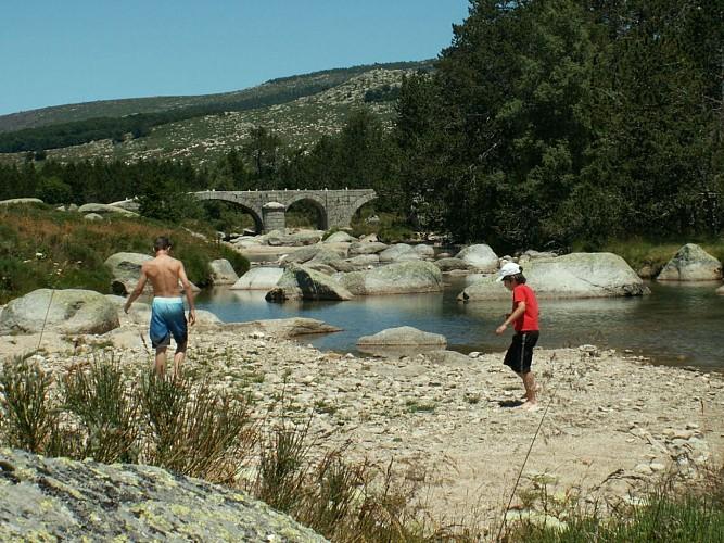 Baignade au Pont du Tarn
