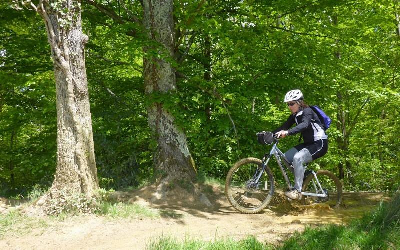 VTT 1 Les Bois de Carrasquet à Sargaillouse