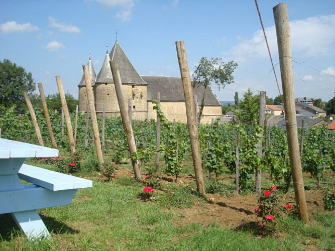balade autour du vignoble et de l'église de Servion