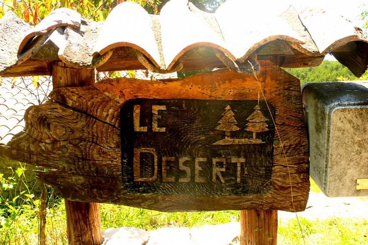 Sur le plateau du Désert