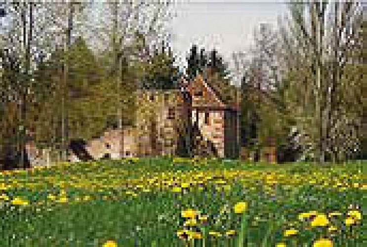 Chateau Mittelhausen