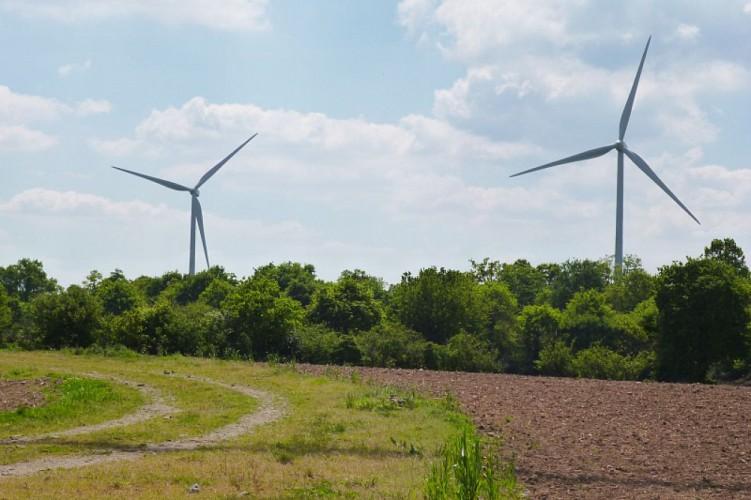Circuit des éoliennes n° 8