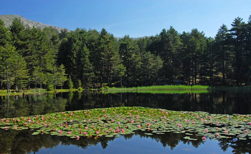 Corse- Région Cinarca- Lac de Creno et Monte Sant'Eliseo