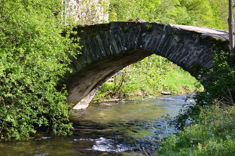 "the bridge of ""les Pessoles"""