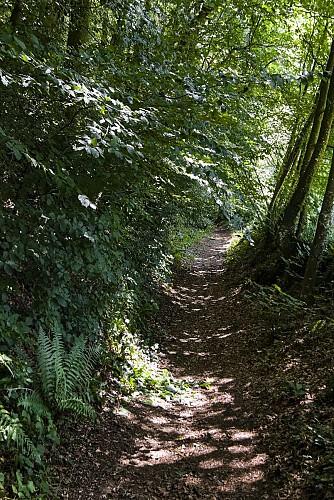 MONTAUDIN - Sentier de la Pihoraye