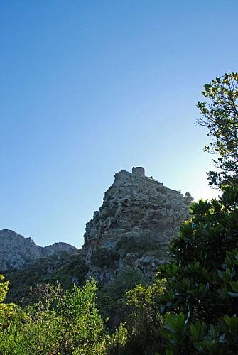 Corse- Région Cap Corse- Tour Sénèque [juin 2008]