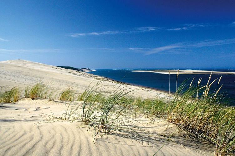 Escapade nature sans voiture - Grand Site de la Dune du Pilat