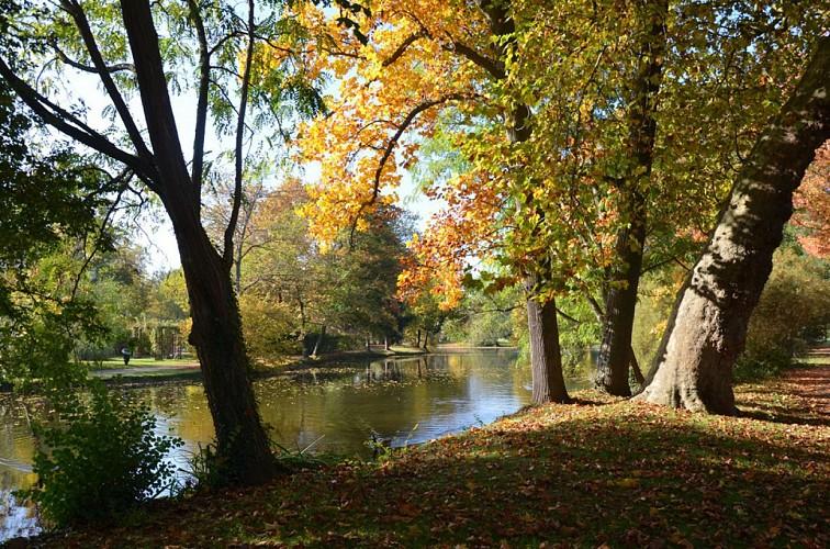 Parcours pédestre à la découverte de la biodiversité au Vesinet en 11 étapes