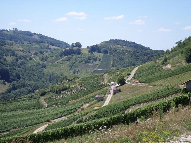 La route du Bugey - Itinéraire au départ de Poncin