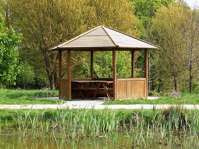L'Arboretum, une balade verte entre nature et découverte