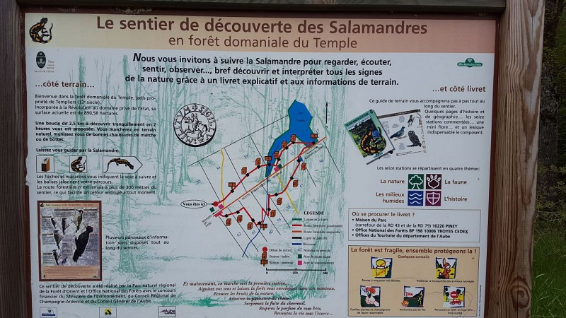 Sentier des salamandres
