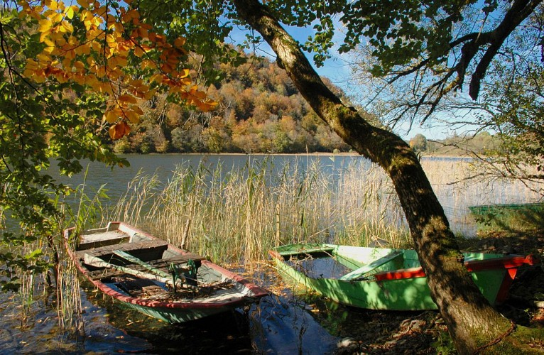 Tour du lac de Bonlieu