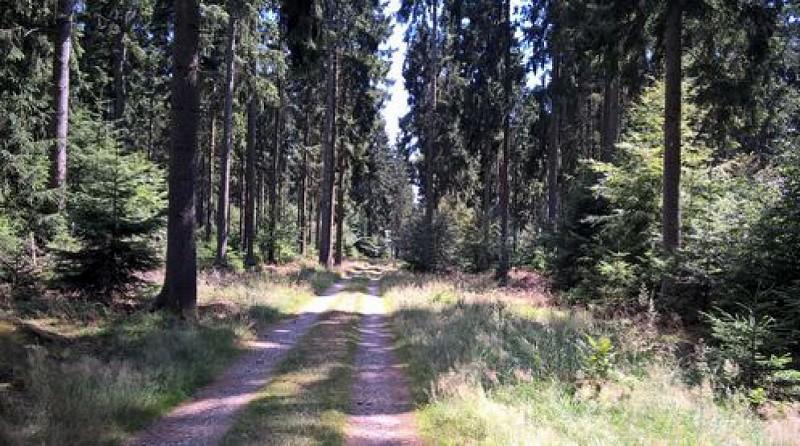 Heinstert, aux portes de la forêt d'Anlier