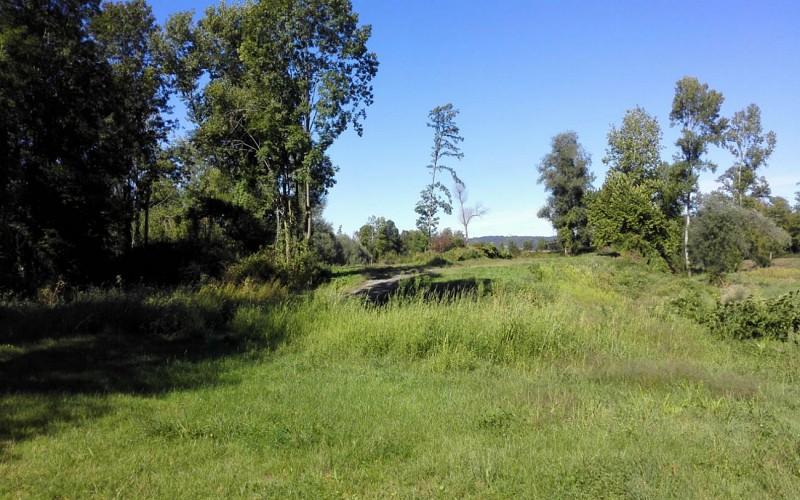 Circuit vélo 2 : boucle de la plaine du Gave et du Lagoin