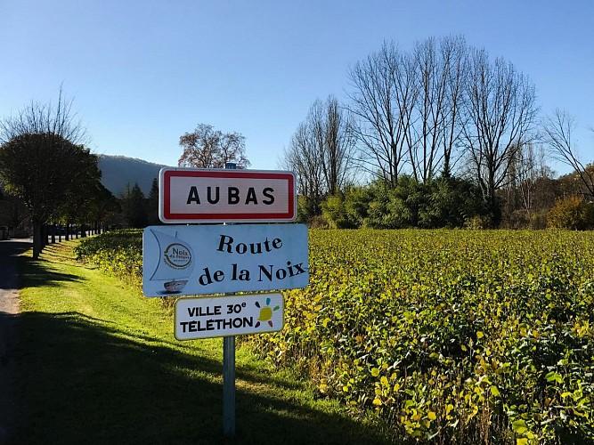 Boucle des Châteaux n° 22 / Aubas