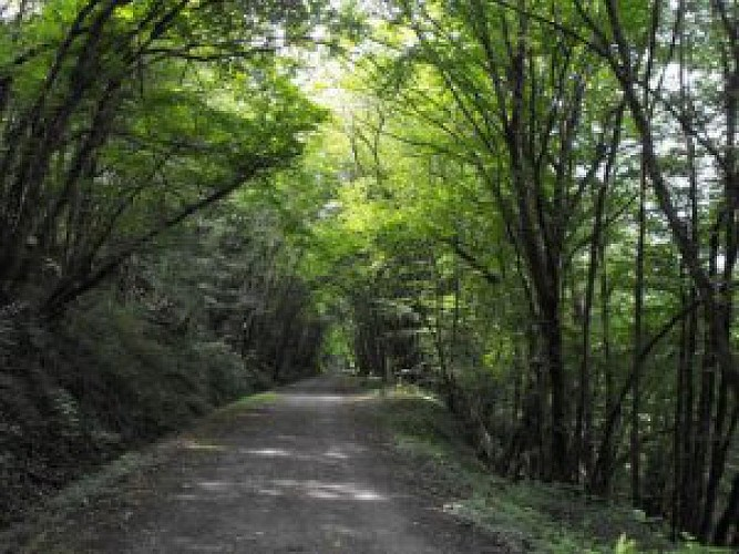 Voie verte Thiviers-Saint Pardoux la Rivière