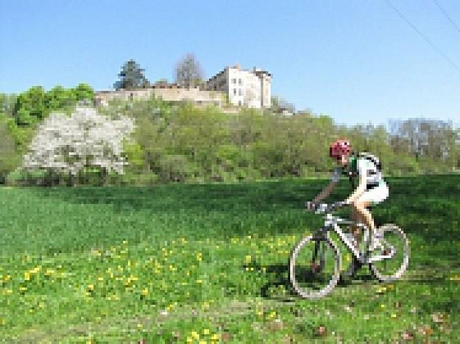 Bellegarde en Forez - Tour de Bellegarde à VTT