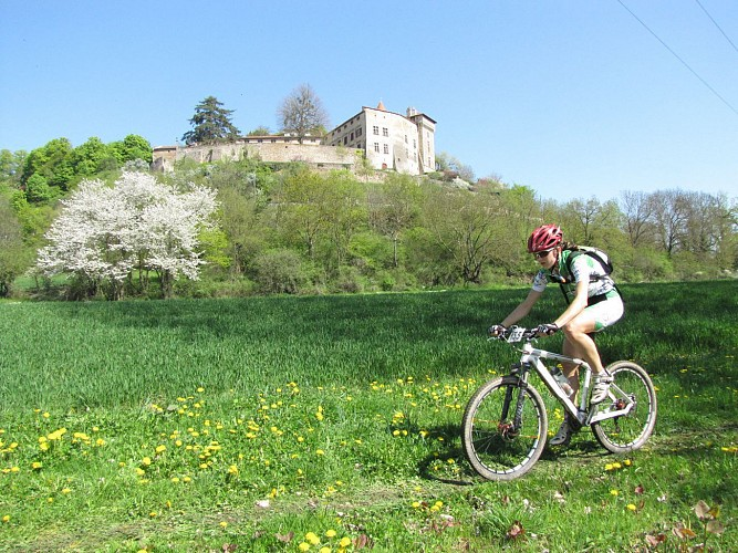 Bellegarde en Forez - Sentier botanique