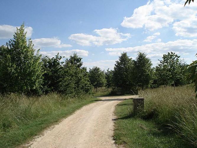 Vélo-route du vieux port de Bergerac - Parc de Pombonne