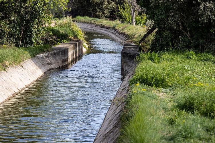 RANDONNEE DU CANAL ET DES RIEUX