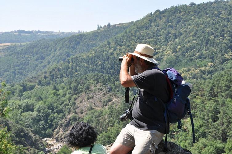 Randonnée les Gorges de la Daronne