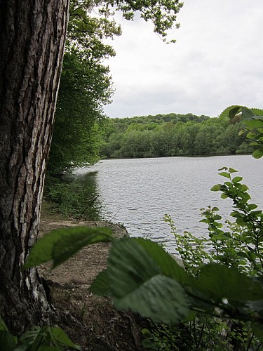 Saint-Rémy-l'Honoré : grand étang de la Mauldre
