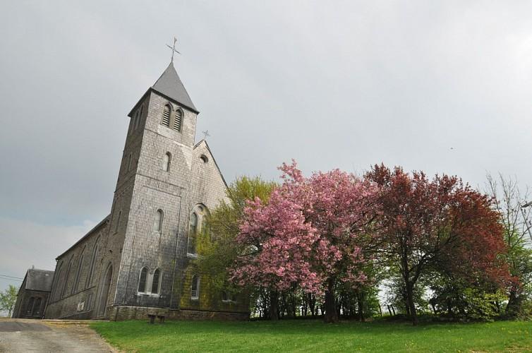Grande promenade de Montplainchamps - Assenois