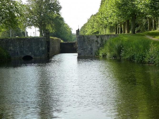 Forêt d'Orléans et étangs